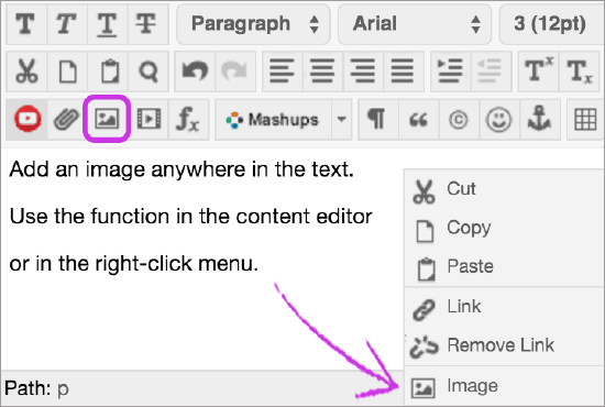Add Files, Images, Video, and Audio | Blackboard Help